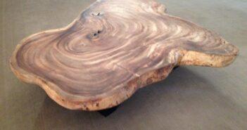 Tisch Baumscheibe