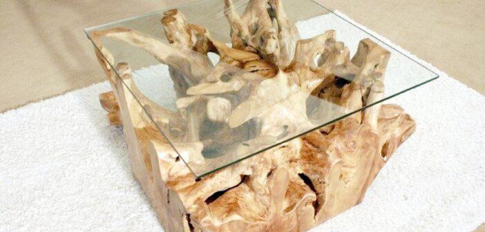 Baumwurzel mit Glasplatte