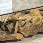 Couchtisch Baumwurzel Wild Root 120x80