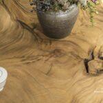 Baumstamm Couchtisch aus einer Baumscheibe rund mit Baumkante