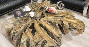 Baumwurzel Couchtisch aus einer Teakholz Wurzel mit Glasplatte