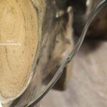 Wohnzimmertisch aus einer Baumwurzel 120x120 cm mit Glasplatte (1)