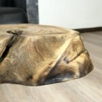 Couchtisch aus einem Baumstamm mit Glas